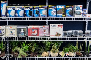 shelves full of dry goods and supplies for aquariums